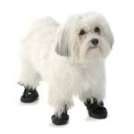 View Image 1 of Piper's Fleece Dog Booties - Navy