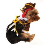 View Image 1 of Pirate Captain Halloween Dog Costume