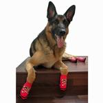 View Image 1 of Pirate Girl PAWks Dog Socks