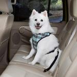 View Image 1 of Plaid Car Harness by Guardian Gear - Blue
