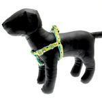 View Image 1 of Polkastripe Dot Ribbon Dog Harness - Aqua Brown