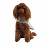 View Image 3 of Popette Dog Coat by Puppia - Gray