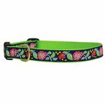 View Image 1 of Posey Dog Collar by Up Country