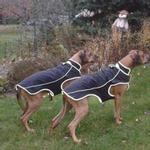 Precision Fit Dog Parka - Black