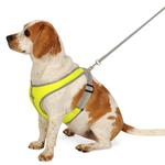 View Image 1 of Precision Sport Mesh Dog Harness - Lime