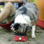 View Image 3 of Quencher Cinch Top Dog Bowl by RuffWear - Red Currant