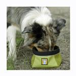 View Image 4 of Quencher Travel Dog Bowl by RuffWear - Lichen Green