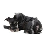 View Image 2 of Race Track Rainsuit by Puppia - Black