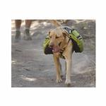View Image 2 of Recreational Approach Pack by RuffWear - Lichen Green