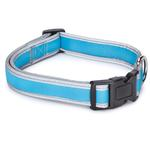 View Image 1 of Reflective Neoprene Dog Collar - Bluebird