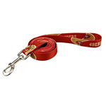 View Image 1 of San Francisco 49ers Dog Leash