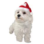 View Image 1 of Santa Dog Hat