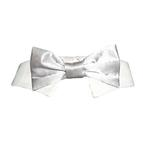 View Image 1 of Satin Dog Bowtie Collar - Silver