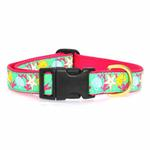 View Image 2 of Reef Dog Collar by Up Country