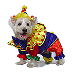 View Image 1 of Shiny Clown Costume