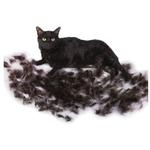 View Image 2 of Short Hair FURminator for Small Cats - Lilac