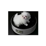 View Image 1 of Sleepypod Mobile Pet Bed Ultra Plush Bedding - Black