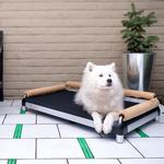 View Image 1 of SnoozeSofa Dog Bed by DoggySnooze - Black