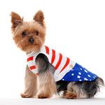 View Image 1 of Star Spangled Dog Dress by Dogo
