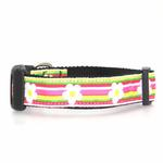 View Image 1 of Striped Daisy Dog Collar