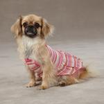 View Image 3 of Striped Seersucker Dog Dress by Zack & Zoey - Pink