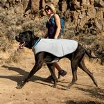 View Image 3 of Swamp Cooler Dog Cooling Vest by RuffWear - Graphite Gray