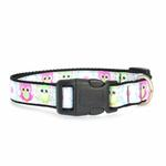 View Image 2 of Sweet as Sugar Owls Dog Collar