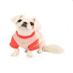 View Image 3 of Sweet Baby Dog Shirt by Pinkaholic - Orange