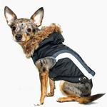 View Image 1 of Swiss Alpine Ski Dog Vest by Hip Doggie - Black