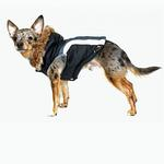 View Image 4 of Swiss Alpine Ski Dog Vest by Hip Doggie - Black