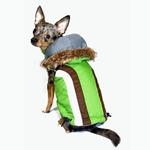 View Image 1 of Swiss Alpine Ski Dog Vest by Hip Doggie - Green