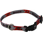 View Image 1 of Tampa Bay Buccaneers Dog Collar