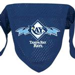 View Image 1 of Tampa Bay Rays Mesh Dog Bandana