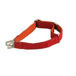 View Image 1 of Tazlab Safe-T Stretch Adjustable Dog Collar - Red Rocks Red