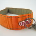 View Image 3 of Tazlab Safe-T-Stretch Dog Collar - Blaze Orange