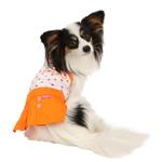 View Image 2 of Tease Dog Dress by Pinkaholic - Orange