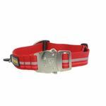 View Image 2 of Top Rope Dog Collar by RuffWear - Red Rock