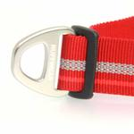 View Image 4 of Top Rope Dog Collar by RuffWear - Red Rock