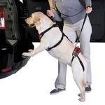 View Image 1 of Total Pet Health Lift & Go Dog Leads - Red