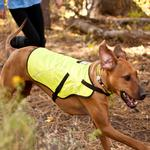 View Image 1 of Track Safety Dog Jacket by RuffWear - Fern Green