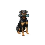 View Image 2 of Tuffy Dog Toys - Ultimate Bone Blue Camo