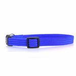 View Image 1 of Twice as Nice Kitty Break-Away Cat Collar - Blue