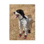 View Image 1 of Ultra Paws Durable Dog Boots - Red