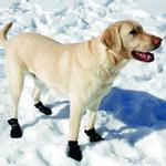 View Image 3 of Ultra Paws Snow & Go Dog Boots - Black