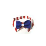 View Image 1 of Uncle Sam Dog Bowtie Collar