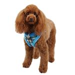 View Image 1 of Uptown Argyle Dog Harness by Puppia - Blue