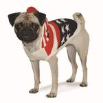 View Image 2 of USA Flag Hooded Dog Sweater by Dogo