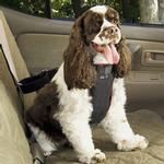 View Image 3 of Vehicle Safety Pet Harness