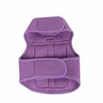 View Image 2 of Vera Pinka Dog Harness by Pinkaholic - Purple
