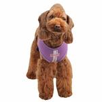 View Image 1 of Vera Snugfit Dog Harness by Pinkaholic - Purple